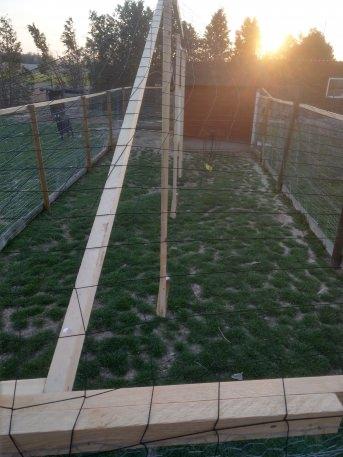 Reiher-Schutznetz per m² (nach Maß), schwarz | Schutznetze24