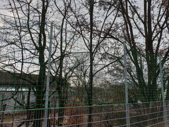 Ballfangnetz für Handball per m² (nach Maß) | Schutznetze24