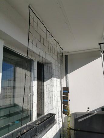 Ranknetz per m² (nach Maß), schwarz | Schutznetze24