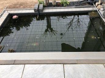 Teichnetz zur Reiherabwehr per m², schwarz | Schutznetze24