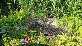 Netz per Quadratmeter (nach Maß) 1,0/30 mm | Schutznetze24